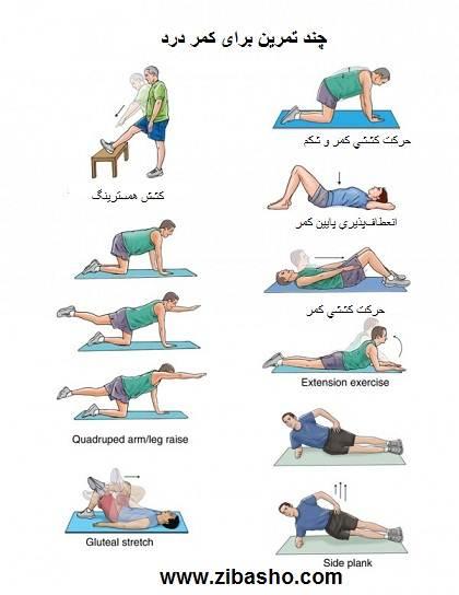 url Copy Optimized چند تمرین برای سلامت کمر