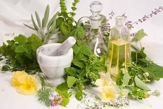 12 01 10 plante medicinale Optimized گیاهان دارویی برای سر درد