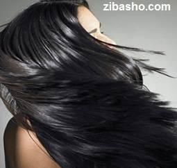 shr Optimized انواع مو و روش نگهداری از آن