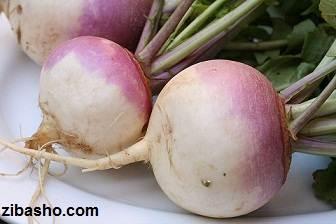 800px turnip 2622027 Optimized همه چیز راجع به شلغم